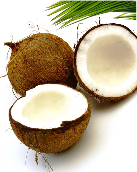 Coconut Conditioner 5Ltr